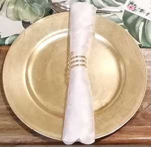 Napkin and plate